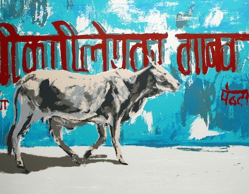 Holy Cow Series VI by Natasha Kumar